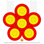 Danage 6-Spot Training Target Face with Scoreboard