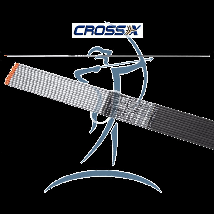 Cross X Ambition SE Silver Edition (±0.003) Carbonschaft » Bogentandler.at